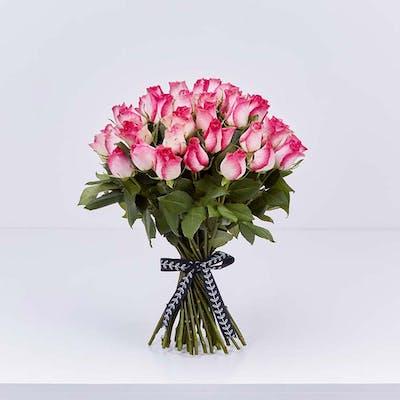 35 Pink Edge Roses