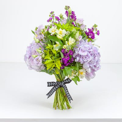 Lilac Lavender