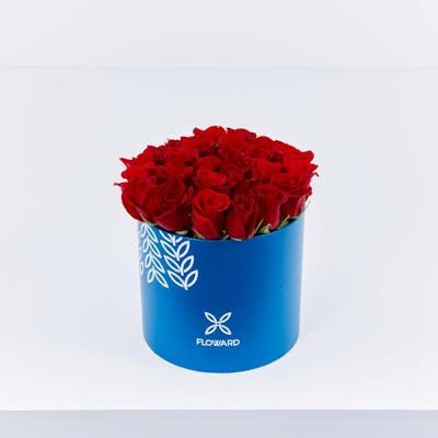 Red Rose Cylinder
